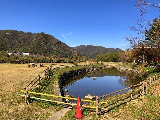 栗栖園地の池
